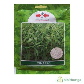 Benih Kangkung Dinara 1500 Butir benih kangkung dinara 1500 biji panah merah bibitbunga