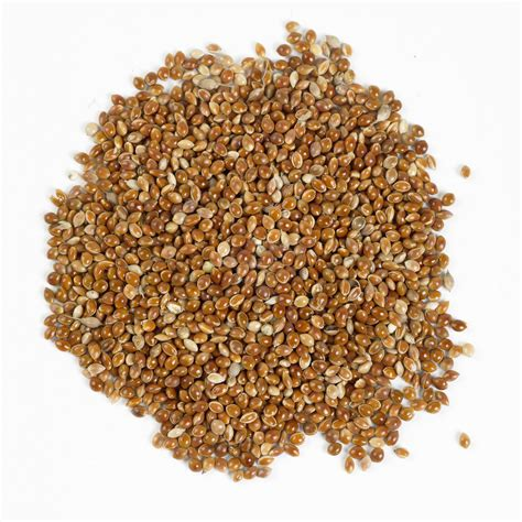 red millet bird seed buy online at vine house farm