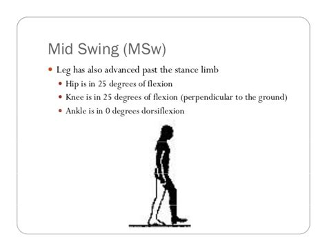definition swing gait analysis definitions