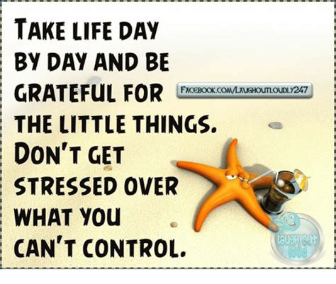 Take Life Day By Day And Be Grateful For The Little Things - funny stress memes of 2017 on sizzle 9gag