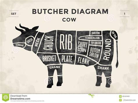 beef butcher diagram beef cuts diagram butcher www pixshark images