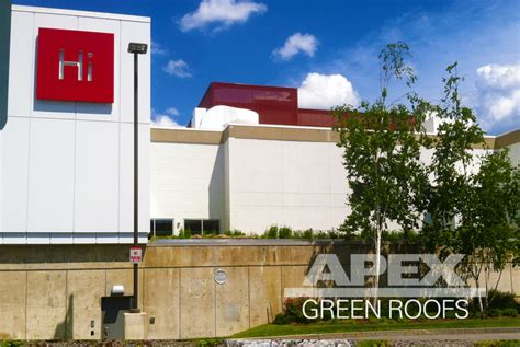 apex green roofs professional green roof design apex green roofs professional green roof design