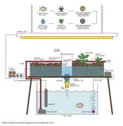 build diagram how to build a simple aquaponics system experiments in