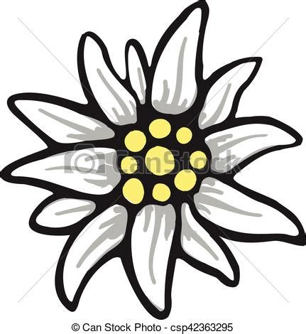 edelweiss bloem oostenrijk alpen alpinism edelweiss bloem symbool duitsland