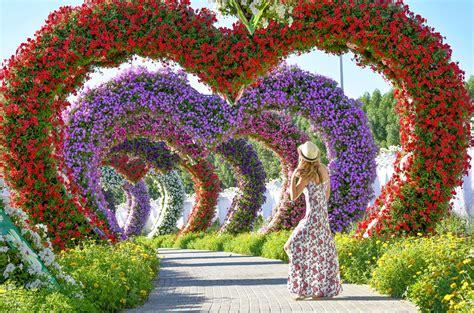 Dubai Flower Garden by Dubai Miracle Garden Izkiz