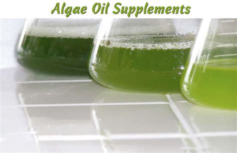 Algae Liver Detox by Algae Supplements Review Powerful Health Benefits
