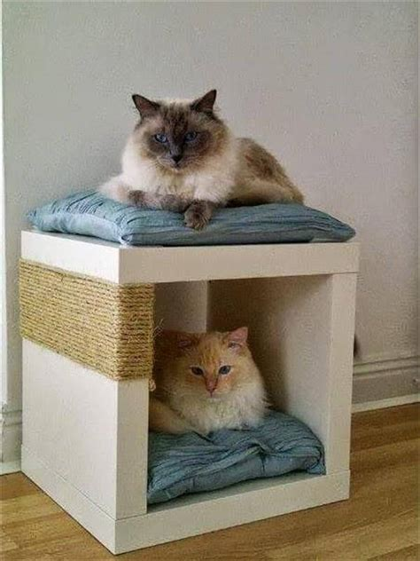 bed for cats 10 diy cat bed ideas diy and crafts