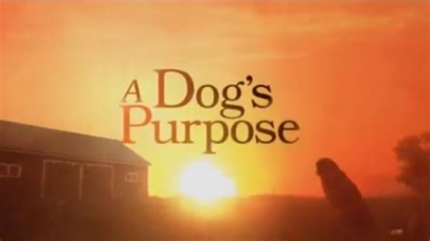 trailer for a s purpose news on screen manitoba