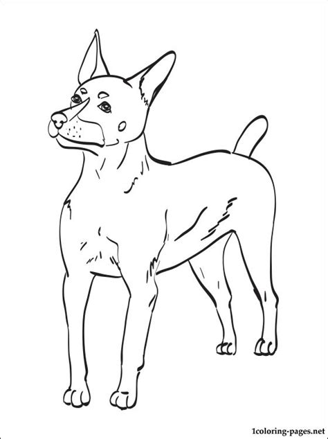 Boston Terrier Coloring Sheets Coloring Pages Terrier Coloring Pages