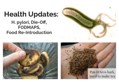 H Pylori Stool by Health Updates H Pylori Fodmap Intolerance Die