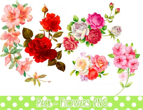 wallpaper flower png pack flowers png 1 by minmeyprints on deviantart
