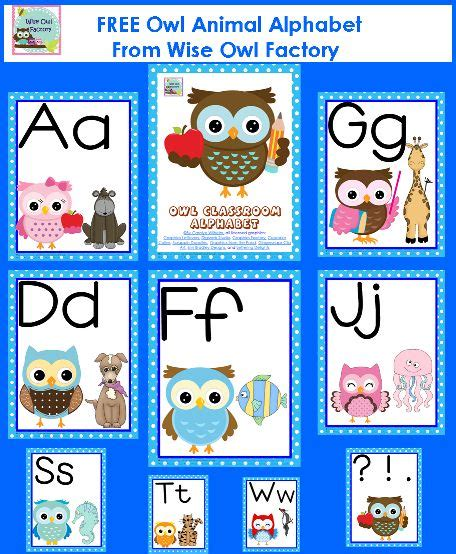 themes in literature wise owl 92 best i give a hoot images on pinterest owls owl and