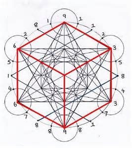 the fibonacci numbers and the platonic solids 171 a cabinet