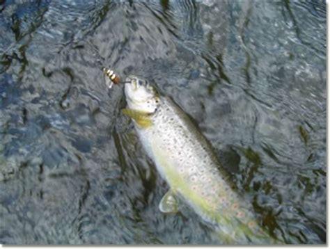 permesso di pesca acque interne zone di pesca in val d aveto anno 2006