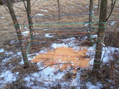 Deer Antler Shed Trap by Deer Antler Traps