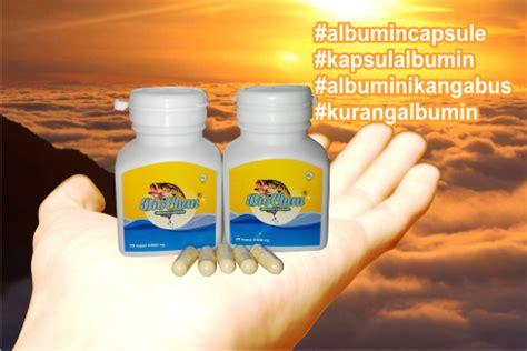 Chalbumin Kapsul Albumin Ikan Gabus Probiotik Albumin kapsul albumin biochan ekstrak ikan gabus solusi
