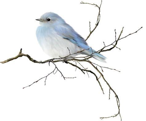 House Silhouette 578 best clipart birds amp bird houses images on pinterest
