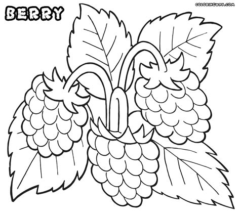 berry coloring pages coloring pages to and print