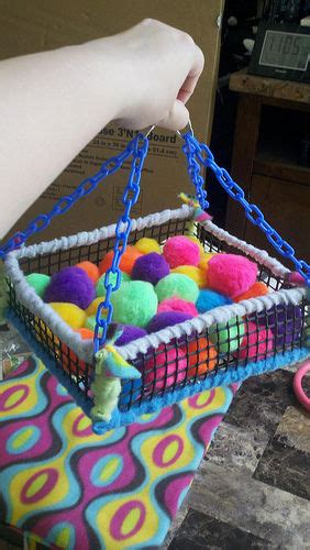 sugar glider toys pictures   images