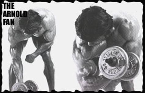 Standing Concentration Curl by Thearnoldfans Biceps