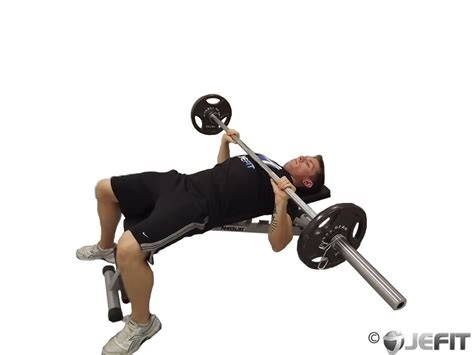 barbell bench presses barbell bench press exercise database jefit best