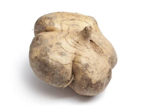 vegetables jicama 7 surprising jicama benefits organic facts
