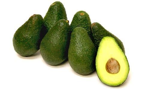 pinkerton avocados information recipes  facts