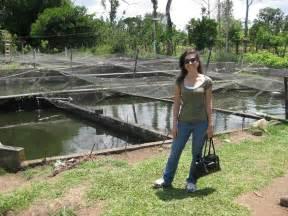 Backyard Tilapia Costa Rica Blogging Tilapia Farming In Costa Rica