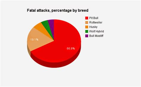 attacks by breed top breed that attacks breeds picture