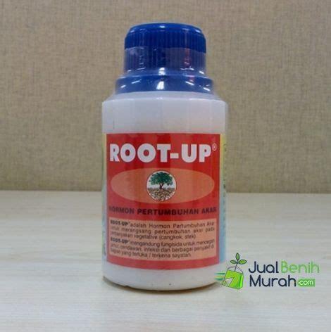 Pupuk Gandasil B Untuk Cabe root up 100 ml jualbenihmurah