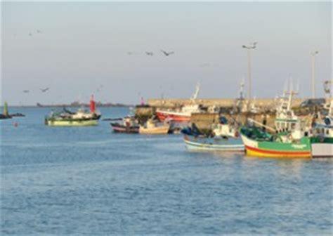 cat 233 gories de produits poisson fruits de mer satoriz
