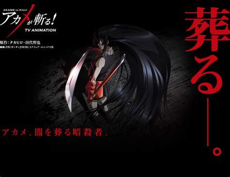 Dompet Akame Ga Kill akame akame ga kill zerochan anime image board