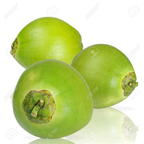 vegfru wholesale suppliers for green coconut in india