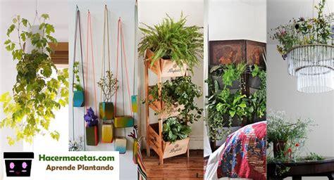 macetas para interiores plantas de interior y las macetas ideal y lindas para