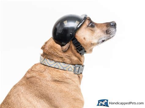 puppy helmet walkin helmet wheelchairs carts handicapped pets canada