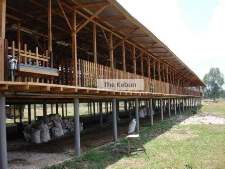 layout of goat house goat house the kebun