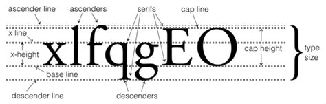 typography descender font anatomy