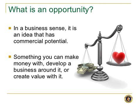 opportunity seeking in entrepreneurship spotting business