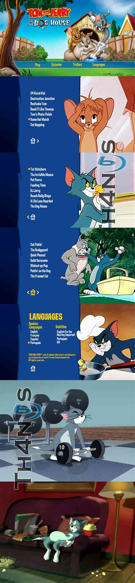 the dog house tom and jerry tom and jerry in the dog house dvd espa 241 ol latino pel 237 culas y series
