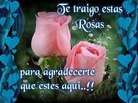 imagenes de rosas hermosas con frases de amistad im 225 genes bonitas con flores y frases de amistad para