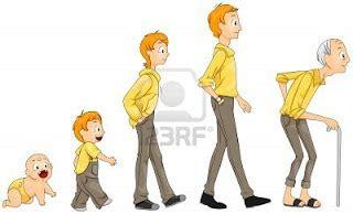 el ciclo de vida del ser humano para colorear imagui periodos y etapas del ciclo de vida del ser humano