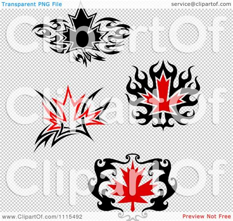 tattoo laws in quebec clipart black and red tribal maple leaves royalty free