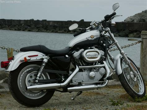 2003 Harley Davidson Sportster by 2003 Harley Davidson Xlh 883 Sportster Pics Specs And
