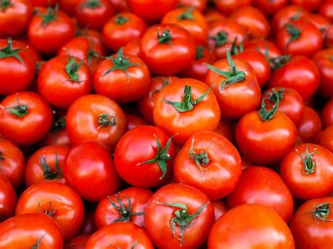 carbohydrates tomatoes tomatoes 101 nutrition facts and health benefits