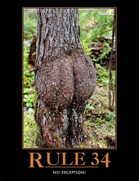 dat tree rule 34 know your meme