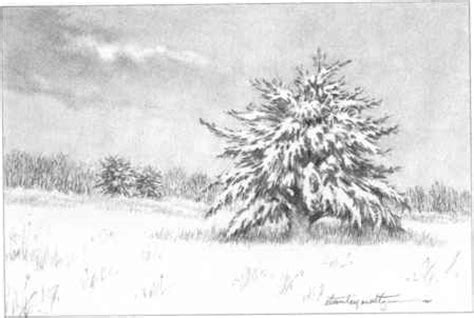 Mountains With Snow And Trees Drawing Nature Joshua