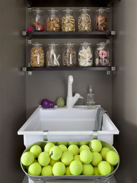 dog themed home decor mudroom for dogs hgtv