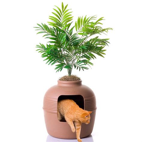 good pet stuff plant hidden litter box petco