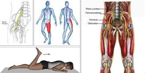 fastidio interno ginocchio la sciatica vi da il tormento ecco come alleviare il