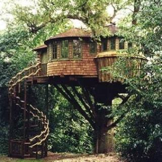 treehouse vacations tree house usa history vacation road trips pinterest